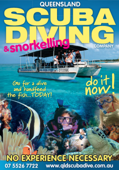 Gold Coast Snorkelling & Dive